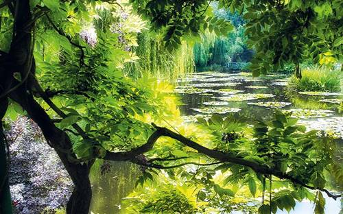 Monets Garden, Giverny